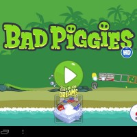 n2a-piggies