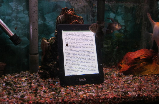 Waterproof Kindle Paperwhite