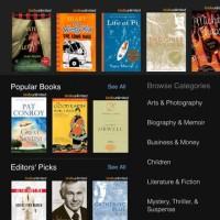 Kindle Book Browser iPad