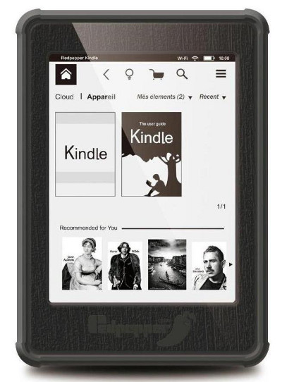 merit kindle case