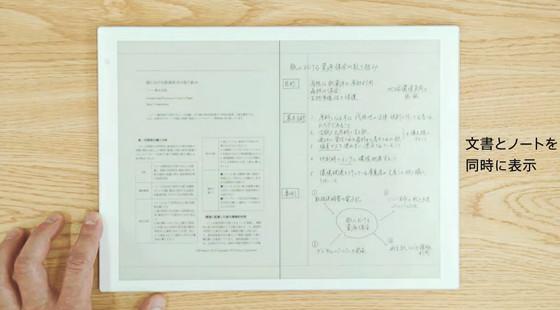 Sony DPT-RP1